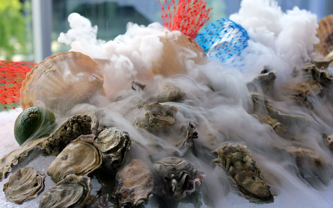 Oysters in the mist…
