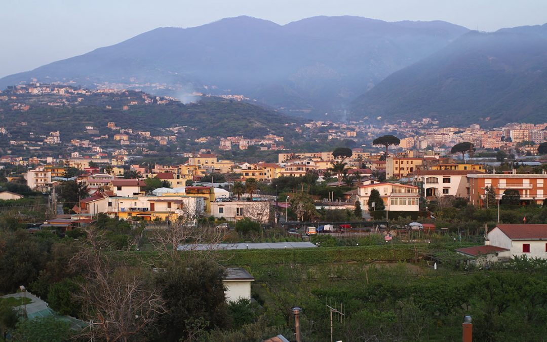 A mission to find olive oil – SIAFTA IV in Campobasso