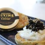 divine caviar w nori blini 033