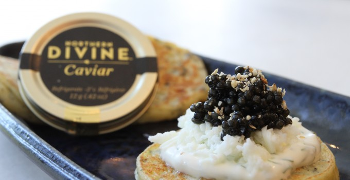 Northern Divine Caviar- Sustainably farmed Organic & Oceanwise Caviar