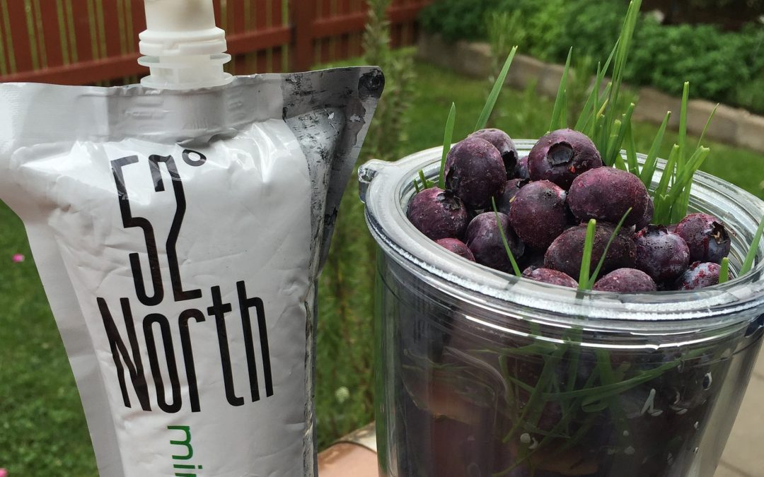Blueberry Birch Water Smoothie – now at the Living Produce Aisle